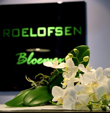 Roelofsen Bloemen webwinkel