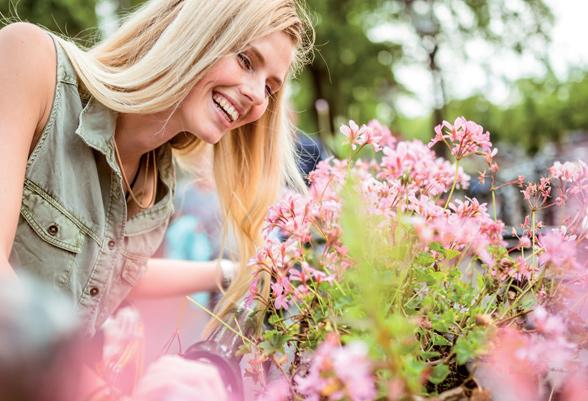 Bloemen bestellen en laten bezorgen