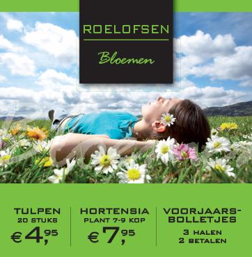 Voorjaarsaanbiedingen Roelofsen bloemen Veenendaal