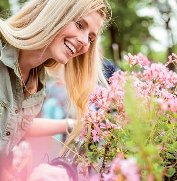 Voorjaarsbloemen bestellen Veenendaal